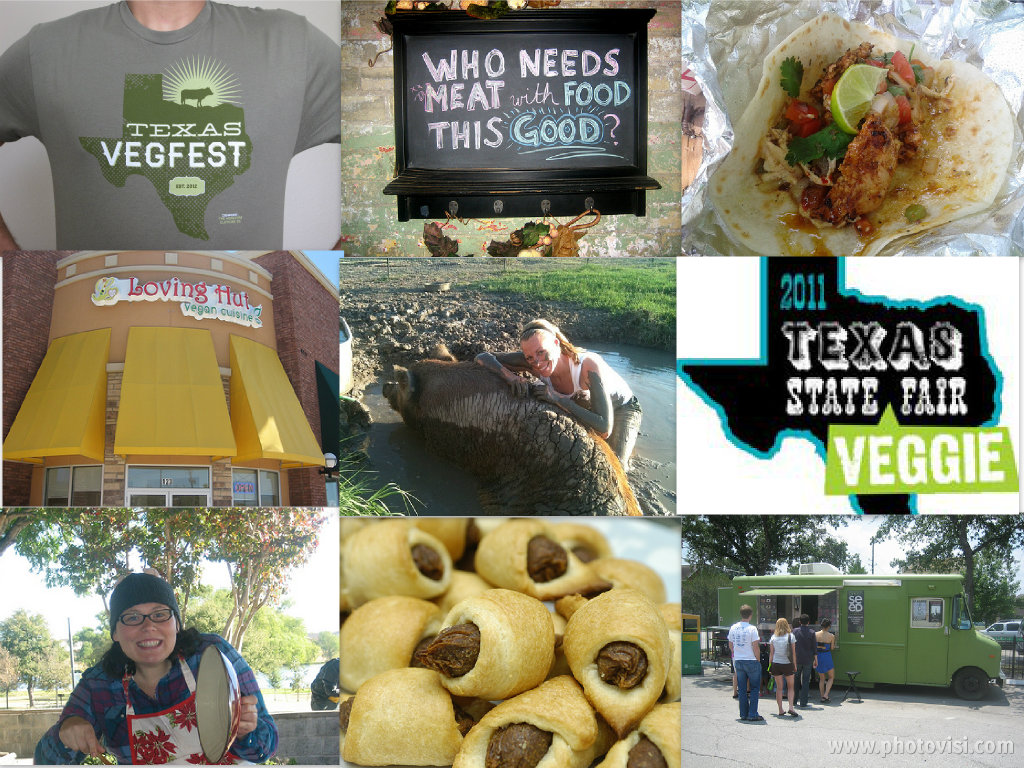 Top: Texas VegFest shirt, sign outside Green Vegetaran, Jalisco Taco from Vegan Nom; middle: Loving Hut in Arlington, Sunny Day Farms, Texas State Veggie Fair; bottom: Lone Star Vegetarian Chili Cook-Off, vegan pigs in blankets, Green Seed Vegan